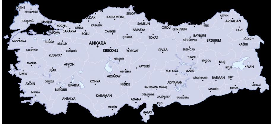 Türkiye'nin Balık Marketi
